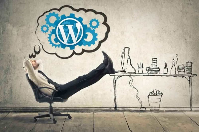 Wordpress Site Açarak İnternetten Para Kazanma